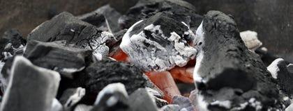 烤肉汇集3 库存照片