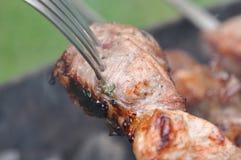 烤肉牛肉肉Kebabs用香料和叉子 库存图片
