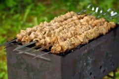 烤肉用卤汁泡的猪肉 库存图片