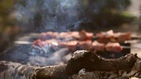 烤肉用可口烤肉和土豆在格栅 烤肉kebab党 木炭格栅 股票视频