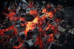 烤肉的木炭 免版税库存照片