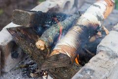 烤肉的营火木头 免版税库存图片