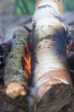 烤肉的营火木头 库存照片