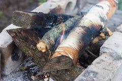 烤肉的营火木头 库存图片