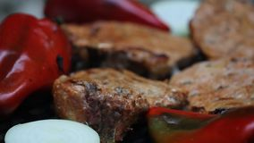 烤肉肉 库存照片