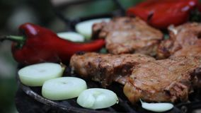 烤肉肉 免版税库存照片