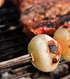 烤肉葱 免版税库存照片