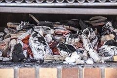 烤肉 免版税库存照片