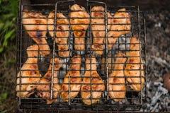 烤肉 免版税库存图片