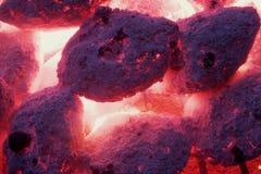 烤肉2 库存照片
