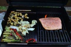 烤菜和三文鱼内圆角芦笋和葱土豆 库存图片