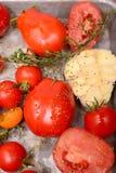 烤蕃茄、大蒜和草本 免版税图库摄影