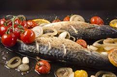 烤蕃茄鳟鱼 库存照片