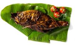 烤鱼在香蕉叶子包裹的镀金面领袖鲂用在白色背景隔绝的蕃茄 Sparus aurata 免版税库存图片