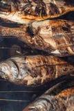烤鱼用在栅格烤肉的柠檬在庭院里在夏天 库存图片