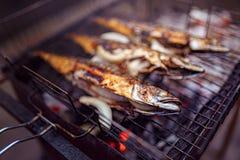 烤鱼用在火的香料 库存照片