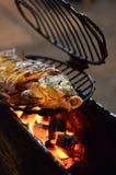 烤鱼 免版税图库摄影