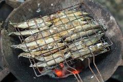 烤鱼 图库摄影