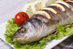 烤鲈鱼用柠檬、水平的莴苣和的蕃茄 免版税库存照片