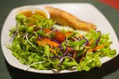 烤鲑鱼排用沙拉 免版税库存照片