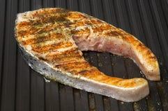 烤鲑鱼排 库存图片
