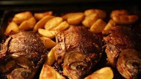 烤鲤鱼用在烤箱的土豆 股票录像