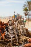 烤鲥鱼用西班牙方式,被烹调在海岸 免版税图库摄影