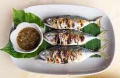 烤鲭类鱼 免版税库存照片