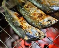 烤鲭鱼 免版税库存照片