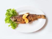 烤鳟鱼用橙色柠檬、沙拉叶子和炸薯条在白色板材顶视图 免版税库存图片