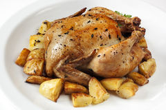 烤鸡和土豆 免版税图库摄影