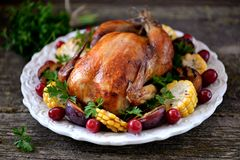 烤鸡在感恩天用玉米、李子、山茱萸和荷兰芹 图库摄影