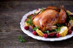 烤鸡在感恩天用玉米、李子、山茱萸和荷兰芹 库存照片