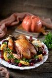 烤鸡在感恩天用玉米、李子、山茱萸和荷兰芹 免版税图库摄影