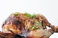 烤鸡,对此的荷兰芹的关闭反对完全白色背景 免版税库存照片