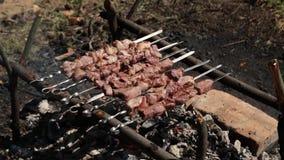 烤,油煎新鲜的肉,鸡烤肉,香肠, Kebab,汉堡包,菜, BBQ,烤肉,海鲜 烤 影视素材