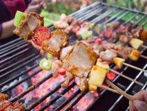 烤bbq鸡采煤的b棒烹调正餐格栅kebab肉蘑菇以子弹密击q串 痘疱肉skewe煤炭格栅  库存图片