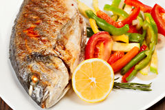 烤dorado鱼 库存图片