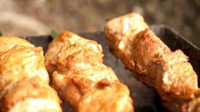 烤kebab特写镜头 库存照片