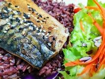 烤saba鱼用在Riceberry的teriyaki调味汁,健康的,日本料理样式干净的食物 免版税库存图片