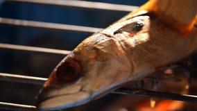 烤saba鱼 影视素材