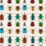 烦扰动画片无缝昆虫的模式 库存图片