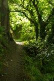 烧伤步行,由河Nith,邓弗里斯,苏格兰 免版税库存照片