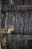 烧光屋顶木头 库存图片