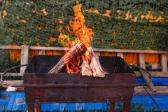 烧在一串室外烤肉的Open fire 免版税图库摄影