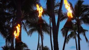 烧在威基基海滩的Tiki火炬在晚上 免版税库存照片
