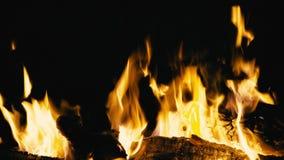 烧在晚上,关闭的营火  股票视频