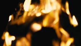 烧在晚上,迷离的营火 股票录像