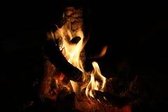 烧在沙漠营火的日志 免版税图库摄影