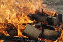 烧在火的木柴 在野餐的篝火 免版税图库摄影